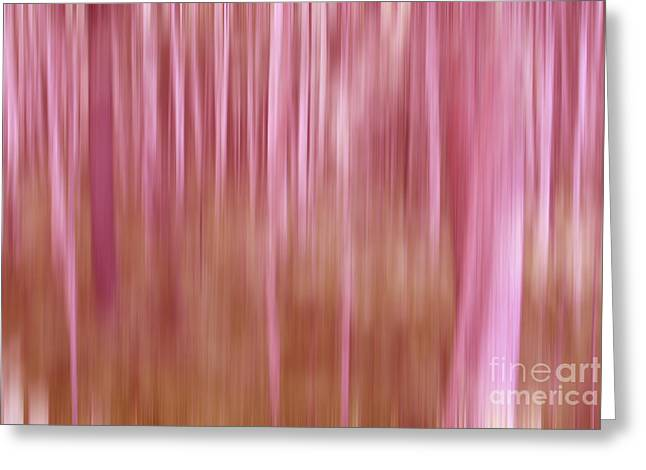 Pink Forest Greeting Card by Sharon Mau