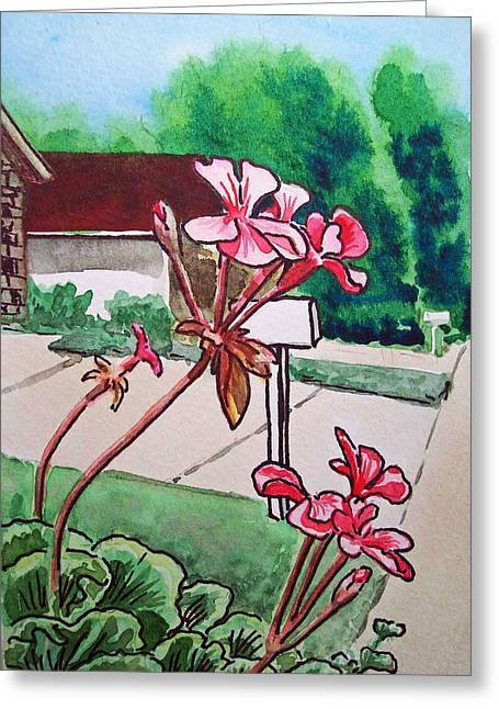 Sketch Book Greeting Cards - Pink Geranium Sketchbook Project Down My Street Greeting Card by Irina Sztukowski