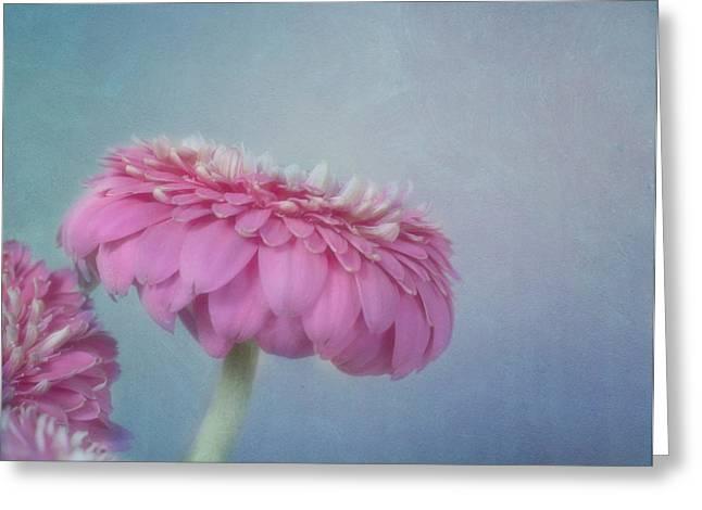Feminine Image Greeting Cards - Pink Greeting Card by Kim Hojnacki