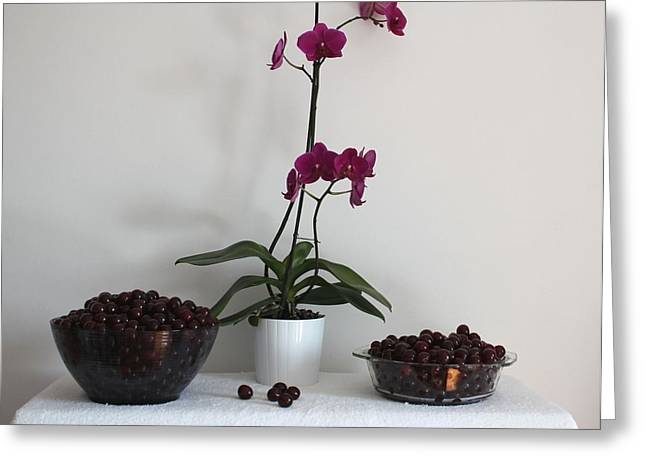 Sour Greeting Cards - Pink Phalaenopsis Orchid and Sour Cherries Greeting Card by Georgeta  Blanaru