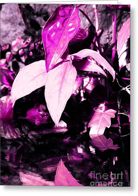 Infer Greeting Cards - Pink Plant Greeting Card by Kathleen Struckle