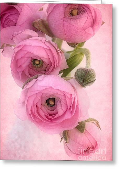 Pink Ranunculus Greeting Card by Ann Garrett