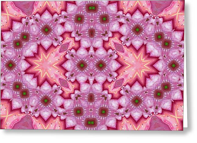 Pink Splash Mandala Abstract Greeting Card by Georgiana Romanovna