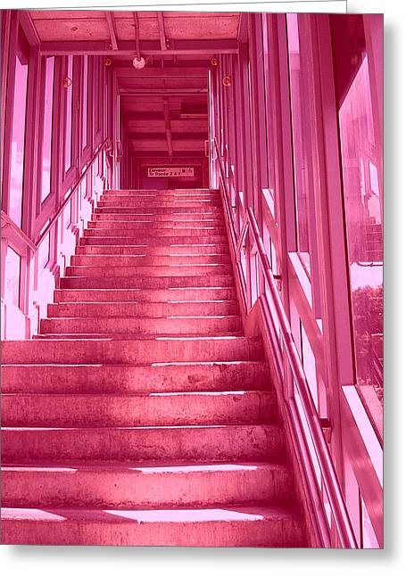 Shades Of Red Greeting Cards - Pink Steps Greeting Card by James McDowell
