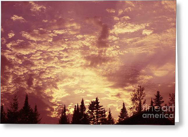 Aimelle Photographs Greeting Cards - Pink Sunset Greeting Card by Aimelle