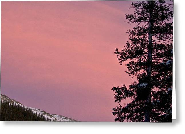 Pink Sunset Greeting Card by Lisa  Spencer