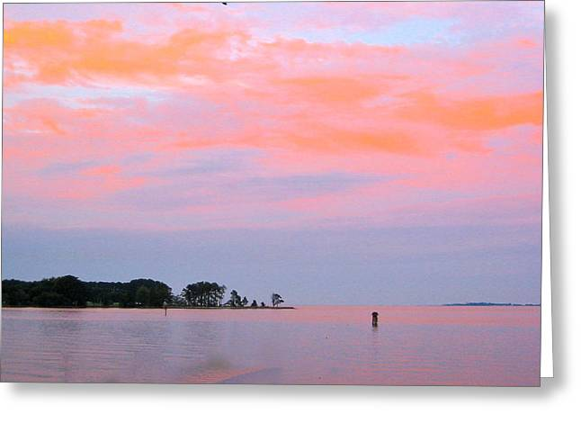 River Photographs Pyrography Greeting Cards - Pink Water Greeting Card by Sarah Gayle Carter
