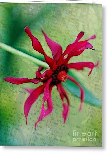 Pinwheel Greeting Card by Judi Bagwell