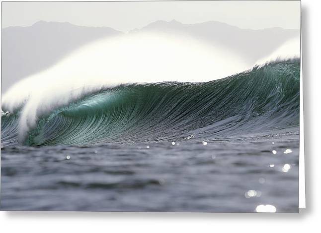 Vince Greeting Cards - Pipeline Wave Greeting Card by Vince Cavataio - Printscapes