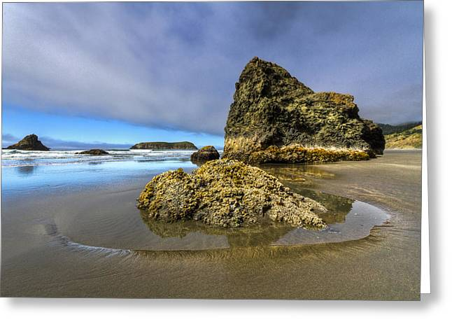 Foggy Beach Greeting Cards - Pistol Beach Greeting Card by Debra and Dave Vanderlaan