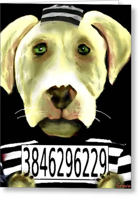 Humorous Greeting Cards Mixed Media Greeting Cards - Pit-itentiary  Greeting Card by Stevn Dutton