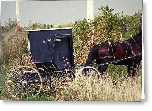 Amish Greeting Cards - Pit Stop Greeting Card by Jame Hayes