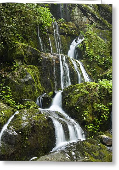 Rapids Greeting Cards - Place of a Thousand Drips Greeting Card by Andrew Soundarajan