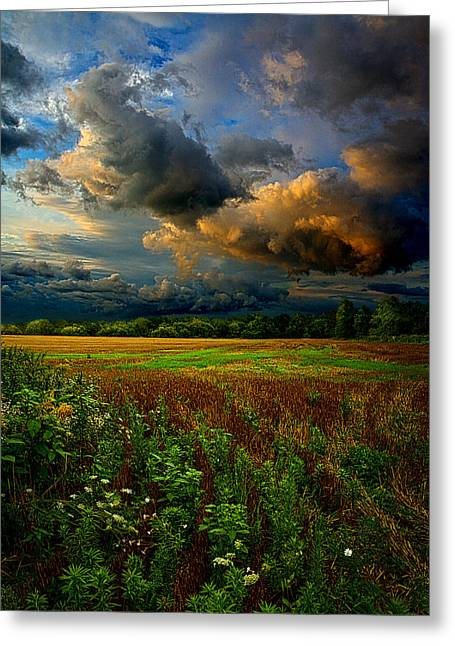 Natural Greeting Cards - Places in the Heart Greeting Card by Phil Koch