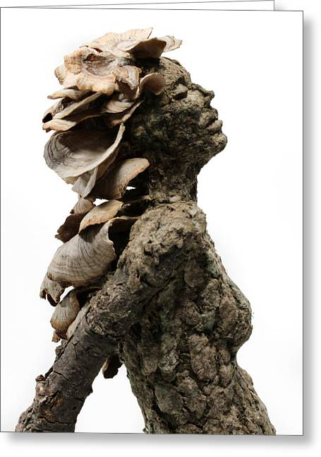 Fungi Mixed Media Greeting Cards - Placid Efflorescence A sculpture by Adam Long Greeting Card by Adam Long