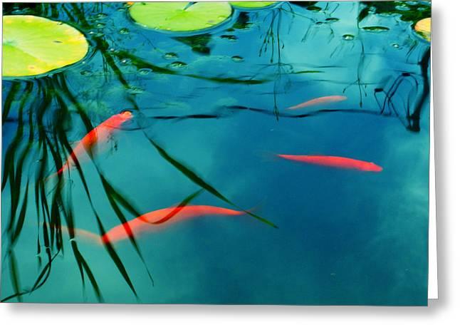 Aimelle Photography Greeting Cards - Plaisir Aquatique Greeting Card by Aimelle