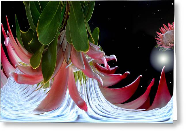 Floral Digital Art Greeting Cards - Planet Of King Protea Greeting Card by Terence Davis