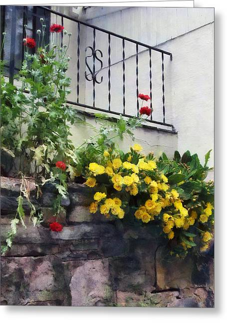 Geraniums Greeting Cards - Planter With Yellow Flowering Cactus Greeting Card by Susan Savad