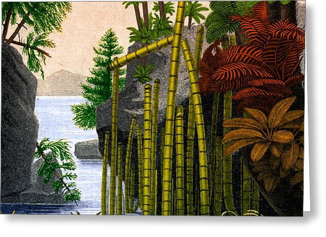 Plants Of The Triassic Period Greeting Card by Science Source