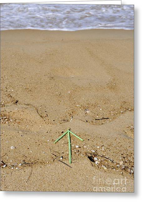 Plastic Solution Greeting Cards - Plastic arrow on beach by waters edge Greeting Card by Sami Sarkis