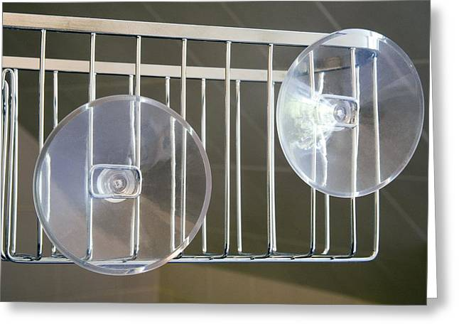 Plastic Suction Cups Greeting Card by Sheila Terry