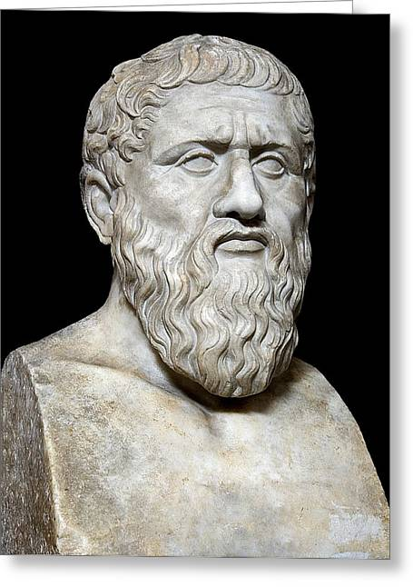 Logical Greeting Cards - Plato Greeting Card by Sheila Terry