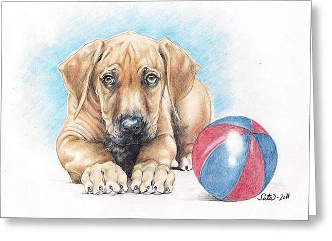 Puppies Drawings Greeting Cards - Play with me Greeting Card by Satu Manninen