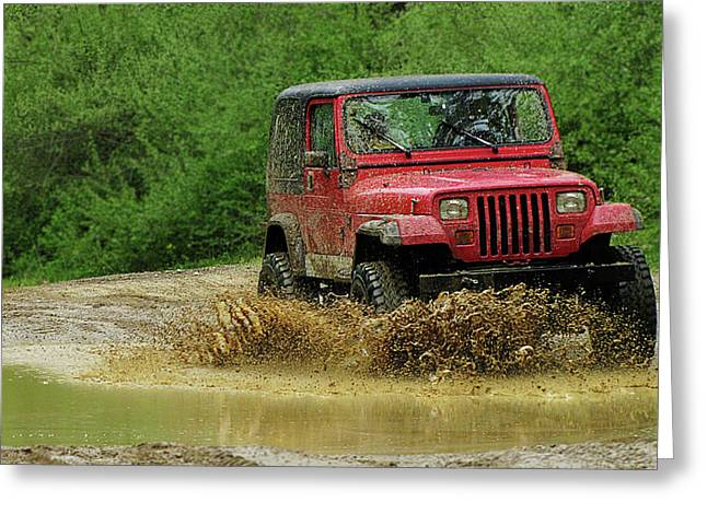 Playing in the Mud Greeting Card by Scott Hovind