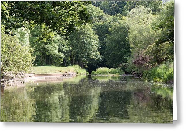 Green Day Greeting Cards - Plessey Down Stream Greeting Card by Aaron Robson