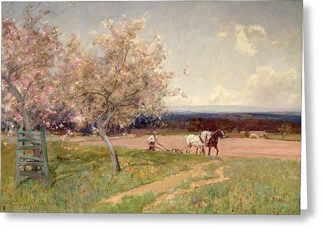 Pink Blossoms Greeting Cards - Ploughing Greeting Card by Sir Alfred East
