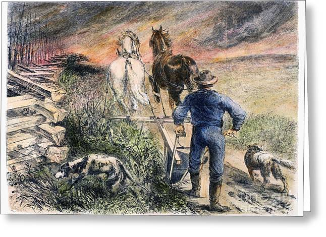 Guard Dog Greeting Cards - Plowing, 1868 Greeting Card by Granger