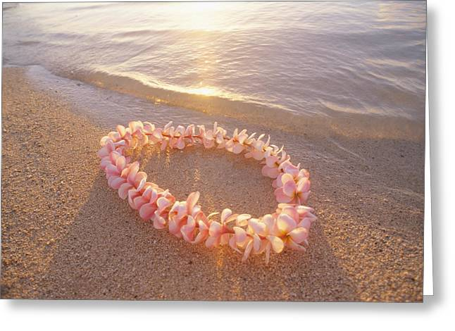 Colorful Photos Greeting Cards - Plumeria Lei Shoreline Greeting Card by Mary Van de Ven - Printscapes