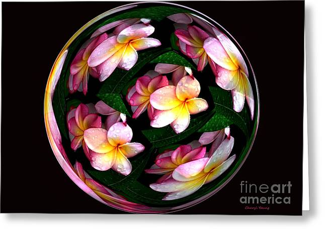 Plumeria Tile Ball Greeting Card by Cheryl Young