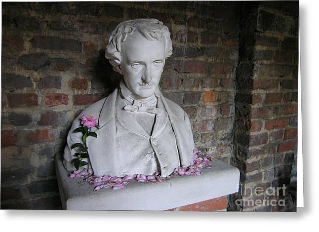 Silvie Kendall Photographs Greeting Cards - Poe Greeting Card by Silvie Kendall