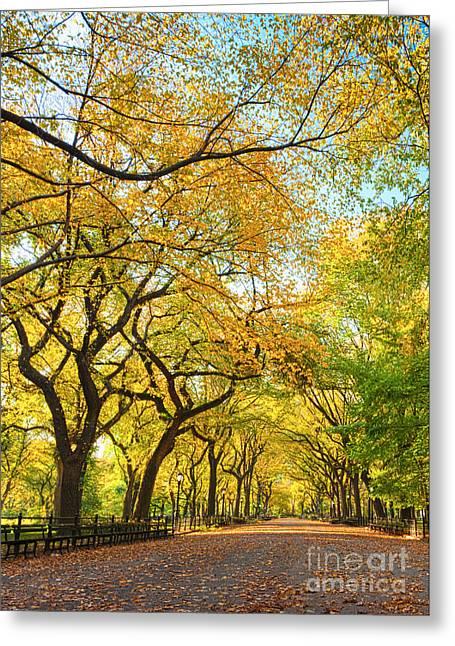 Autumn Splendor Greeting Cards - Poets Walk in Autumn Splendor Greeting Card by Andria Patino
