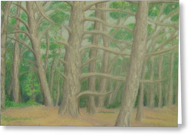 Big Sur California Pastels Greeting Cards - Point Lobos 6 Greeting Card by Marcia  Perry