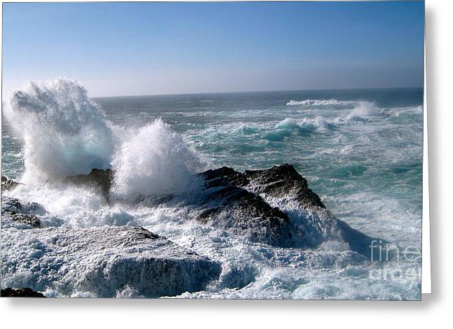 Point Lobos Greeting Cards - Point Lobos CA Greeting Card by Iris Vanessa Hood