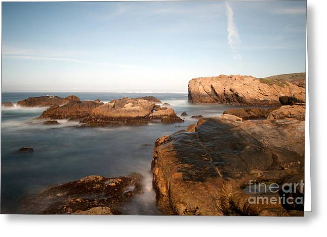 Point Lobos Number Three Greeting Card by Catherine Lau