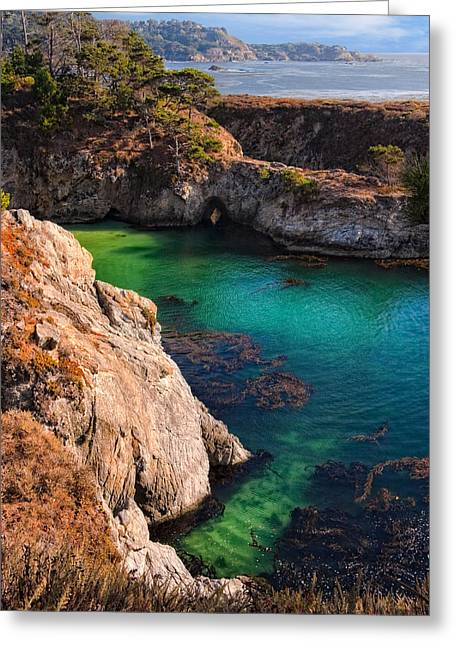 Recently Sold -  - China Cove Greeting Cards - Point Lobos State Reserve California Greeting Card by Utah Images