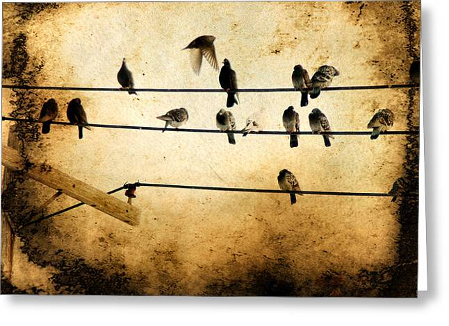 Point Of View Greeting Card by Gothicolors Donna Snyder