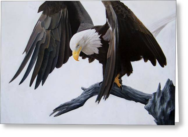 Eagles Pastels Greeting Cards - Poised Greeting Card by David Vincenzi