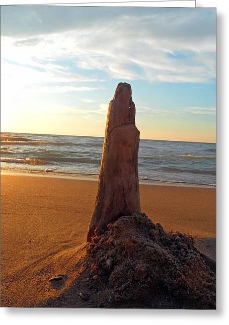 Beach At Night Greeting Cards - Poke Me Greeting Card by Cyryn Fyrcyd