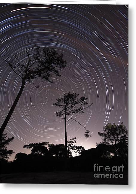 Circular Motion Greeting Cards - Polar Star Trails Circle Greeting Card by Miguel Claro