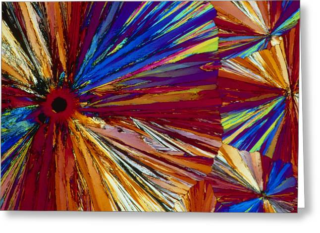 Aspirin Greeting Cards - Polarised Lm Of Crystals Of Asprin Greeting Card by Sinclair Stammers.