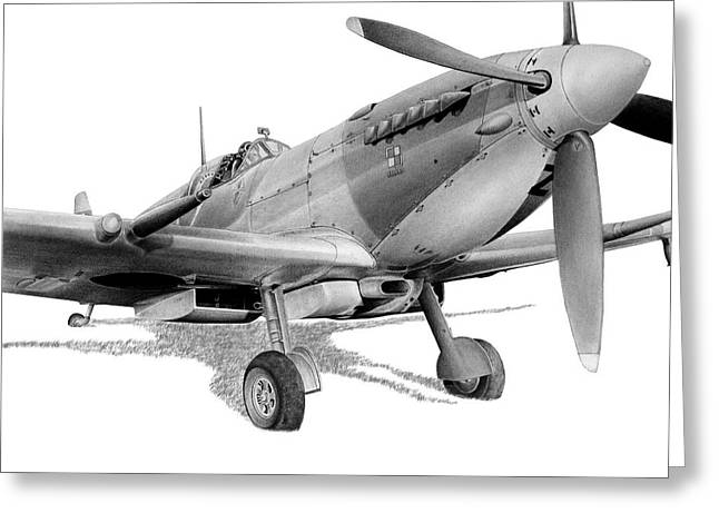 Spitfire Drawings Greeting Cards - Polish Spitfire Squadron Greeting Card by Lyle Brown