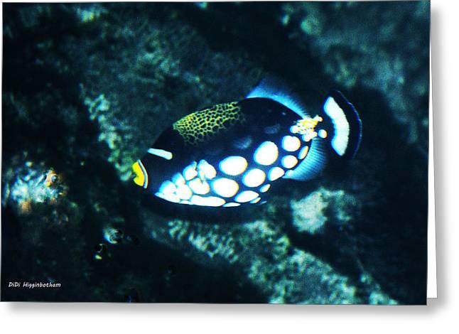Polka Dot Fish Greeting Card by DiDi Higginbotham