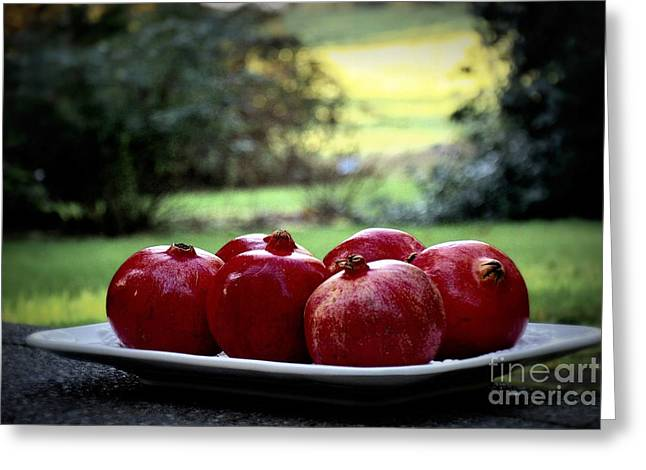 Harvest Deco Photographs Greeting Cards - Pomegranates On White Platter 3 Greeting Card by Tanya  Searcy