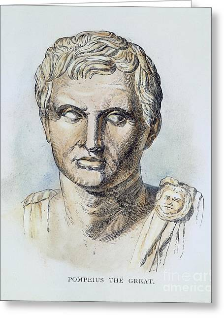 Statue Portrait Photographs Greeting Cards - Pompey (106-48 B.c.) Greeting Card by Granger
