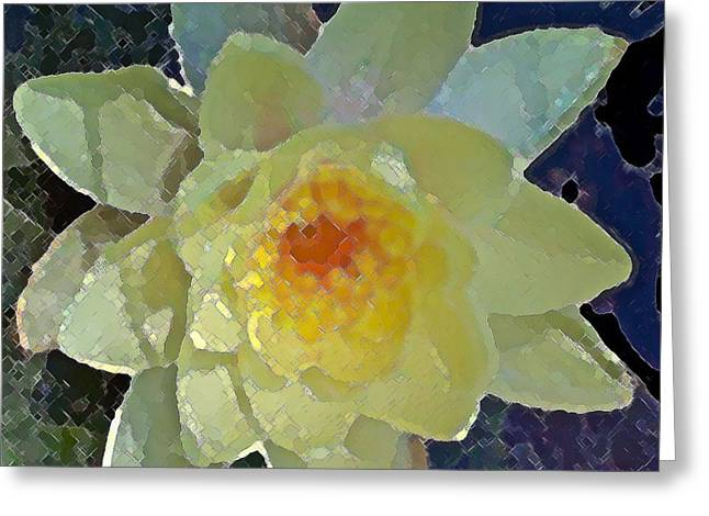 Pamela Cooper Greeting Cards - Pond Lily 12 Greeting Card by Pamela Cooper