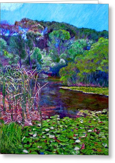 Cape Lily Greeting Cards - Pond of Tranquility Greeting Card by Michael Durst